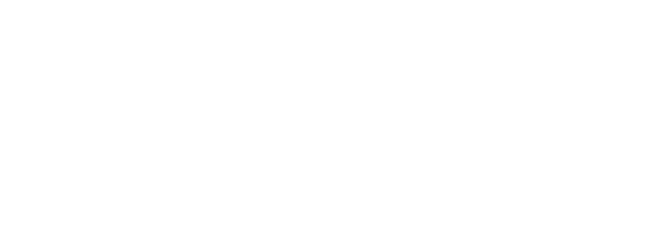 Scouts 17th West Lothian